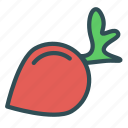food, healthy, radish, vegetable icon