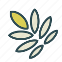 food, grain, seed, wheat icon