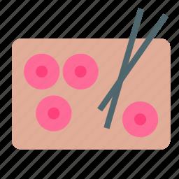 chinese, chopstick, dish, food, sushi icon