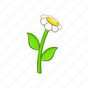 cartoon, chamomile, floral, flower, plant, spring, white icon