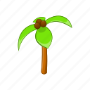 botany, cartoon, coconut, exotic, green, palm, tree icon