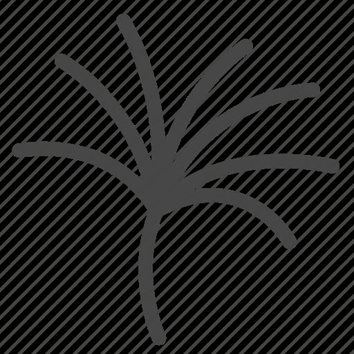 botanic, foliage, leaf, papyrus, plant icon