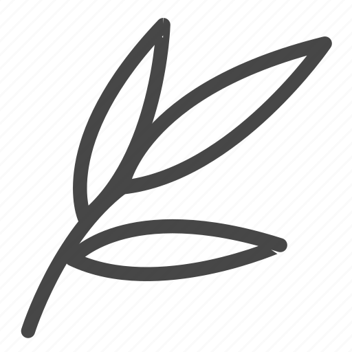 botanic, foliage, leaves, plant icon
