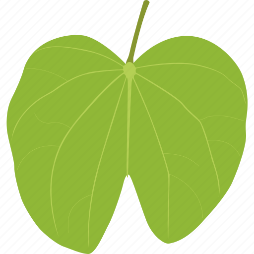 herb, leaf, leaves, plant, tropic, tropical icon