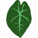 botanical, botany, herb, herbal, leaf, leaves, plant icon