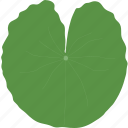 big, jungle, leaf, leaves, plant, tropical, water icon