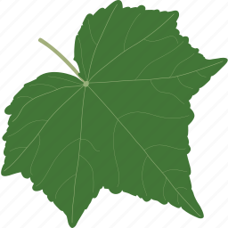autumn, foliage, leaf, leaves, plant, season, summer icon