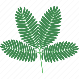 bush, foliage, forest, leaf, leaves, plant, tree icon