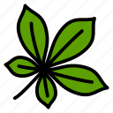 chestnut, leaf, nature, plant, tree icon