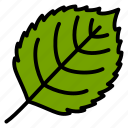 birch, leaf, nature, plant, tree icon