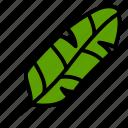 banana, leaf, nature, plant, tree