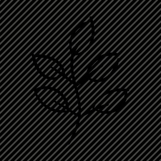 Environment, garden, leaf, nature, nurture, plant, stem icon - Download on Iconfinder
