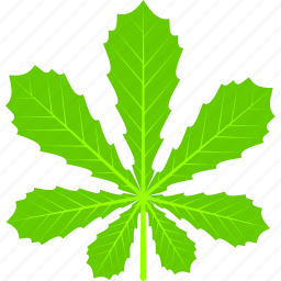 chestnut, flora, foliage, leaf, leaves, nature, plant icon