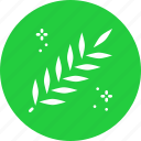 acacia, easter, flora, leaves, lent, spring, twig icon