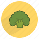 broccoli, fiber, food, fresh, healthy, vegetable, vitamin c icon