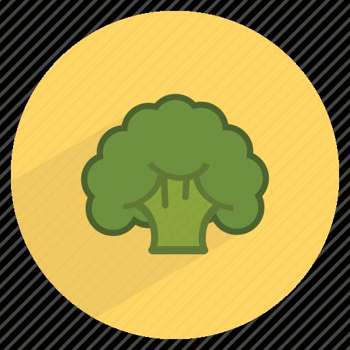 broccoli, fiber, food, fresh, healthy, vegetable, vitamin c icon
