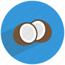 coconut, fat, food, healthy, saturated, seed, shell icon