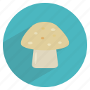 d, food, healthy, mushroom, shroom, vegetable, vitamin icon