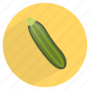 food, fresh, gourd, healthy, squash, vegetable, zucchini icon
