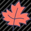 autumn, leaf, nature, fall icon