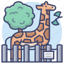 zoo, park, animal, giraffe icon