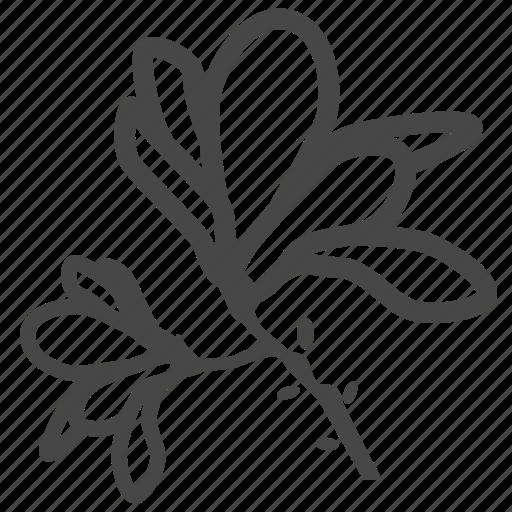 blossom, botany, decoration, floral, flower, flowers, magnolia icon