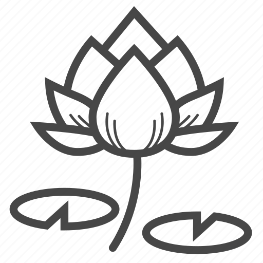 aquatic plant, blooming, blossom, corbel, flower, lotus, tropical icon