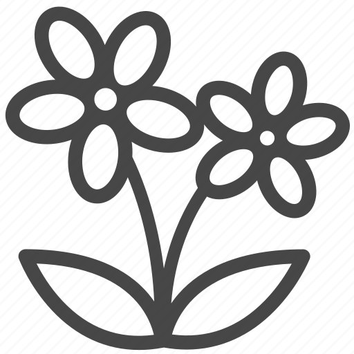 blooming, blossom, botany, flower, wildflower icon
