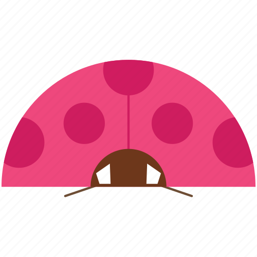 animal, animal face, cartoon, ladybug, linear animal icon