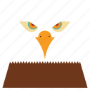 animal, animal face, bird, buzzard, cartoon, eagle, linear animal icon