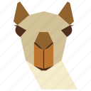 animal, animal face, camel, camel face, cartoon, lama, linear animal icon