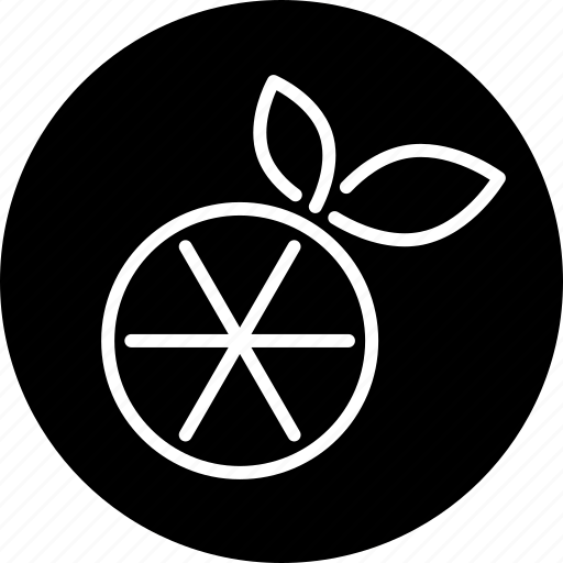citrus fruit, food, fruit, lemon, orange icon