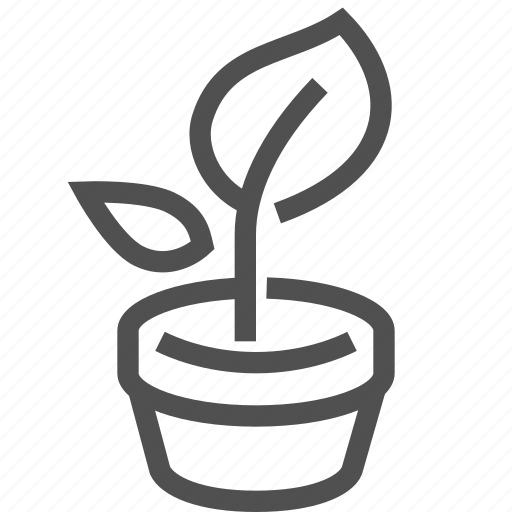 ground, growth, herb, leaf, plant, pot, sprout icon