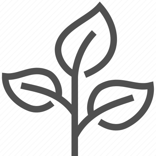 flower, growth, herb, leaf, nature, plant, sprout icon