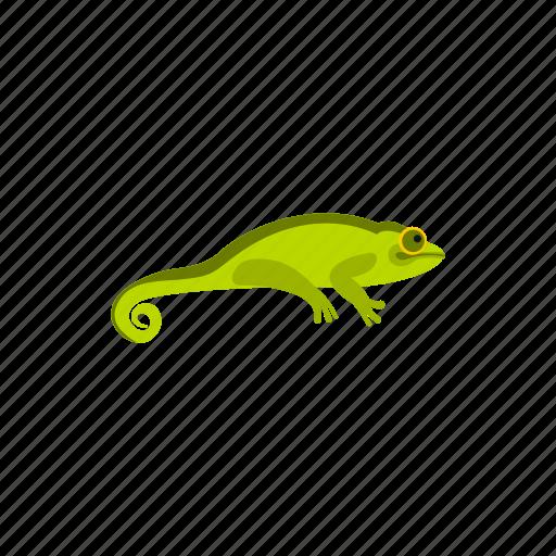 amphibia, amphibian, chameleon, reptile, species, water, wild icon