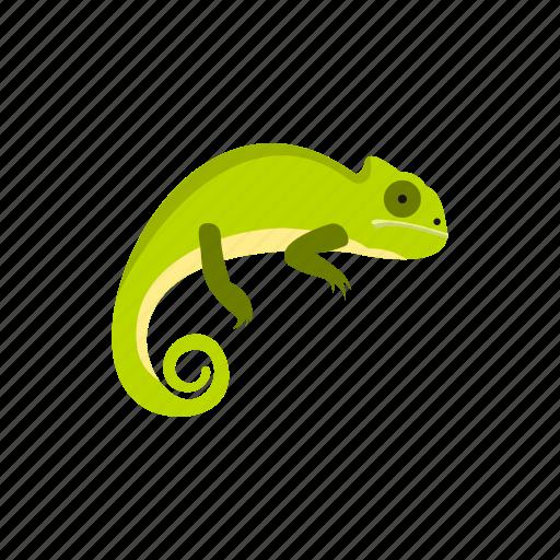 amphibia, amphibian, chameleon, crested, reptile, water, wild icon