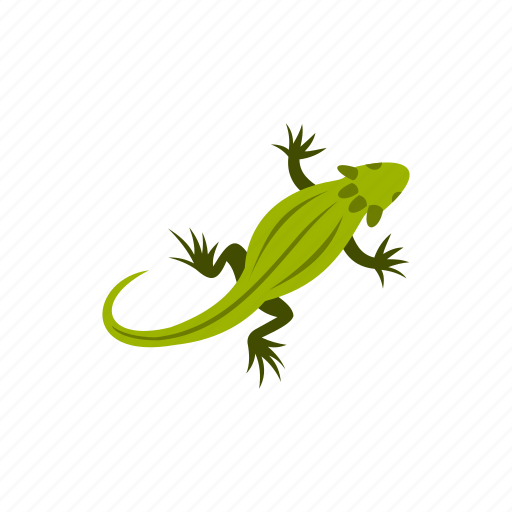 amphibia, amphibian, chameleon, crested, reptile, water, wild icon