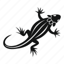 animal, dragon, lizard, nature, reptile, wild, wildlife icon