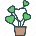 heart, love, plant, romance icon
