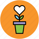 decoration, flower pot, flowers, heart flowers, love, romance icon