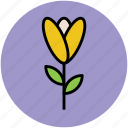 blossom, decoration, floral, flower, greeting, romance icon