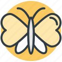 butterfly, greeting, heart shaped, love sign bird, love theme icon