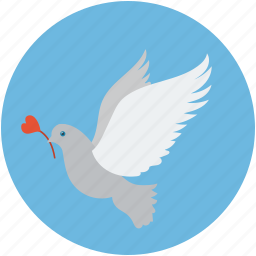 bird and rose, dove of peace, dove with rose, flying dove, glowing dove, love sign bird, peacemaker, pigeon icon