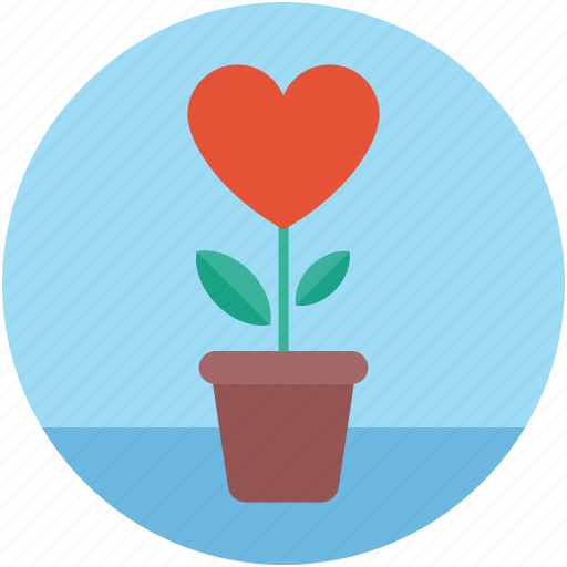 heart on plant, heart plant, love concept, plant and heart, plant with heart icon