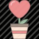 february, flower, heart, love, pot, valentine, romantic
