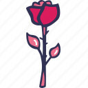 bloom, celebration, flower, love, rose icon