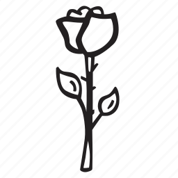 bloom, celebration, flower, love, plant, rose icon