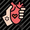 donate, hand, heart, love, organ