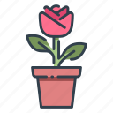 decoration, floral, flower, flowers, garden, plant, spring icon