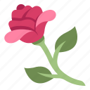 blossom, decoration, floral, flower, rose, valentine icon